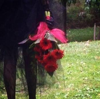 Queen of hearts. Little flower lane.