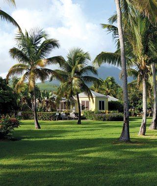 35 best My trip to Nevis images on Pinterest Places to travel
