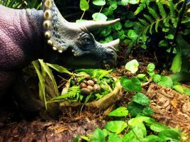 Jurassic Park Diorama Triceratops and eggs by Katie9999