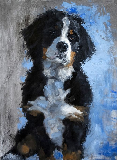 "Irie - Bernese Mountain Dog - Oil Portrait 14x18"" SOLD"