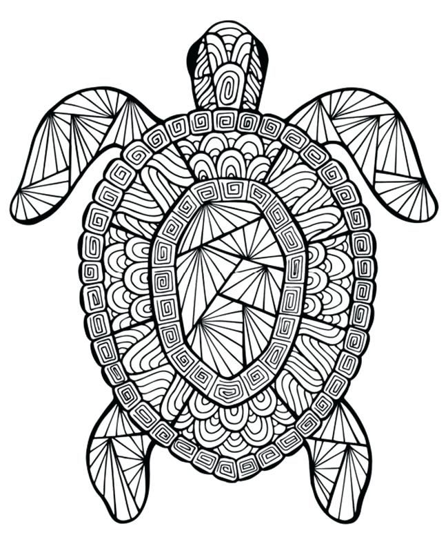 Summer Fun Coloring Pages Full Size Of Fun Pages Number Free Printable To Print Out Summer P Turtle Coloring Pages Summer Coloring Pages Mandala Coloring Pages
