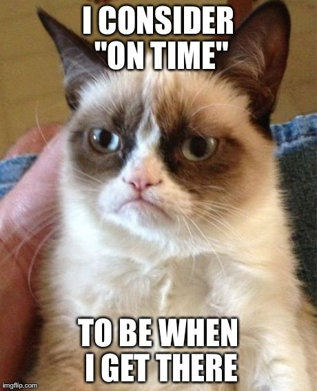Community Post: 14 Hilarious Grumpy Cat Memes That Will Make You Smile