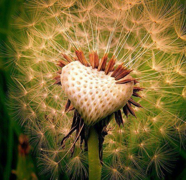 Человеческое сердце, одетое, застегнутое на все пуговицы обстановки, интересов, манер, условностей, расы и классов, остается тем же сердцем, если его обнажит горе, любовь, ненависть или смех. Но как редко оно обнажается! Какие все в жизни одетые! ... Оно,