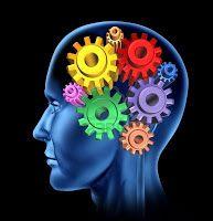 Scalexovo plkance: Jak si přeprogramovat mozek a za měsíc být šťastný...