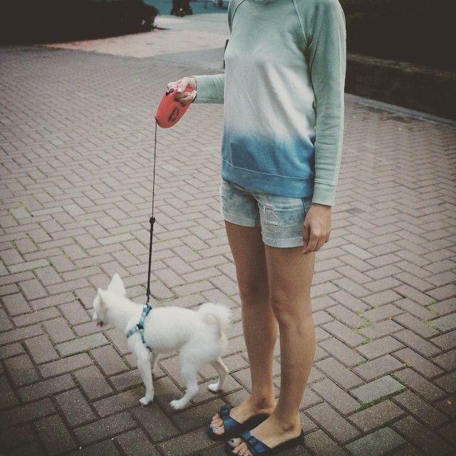 # #불금 에는 #강아지 와 #산책  #friday #night #walking with #dog  . . . . #ootd #daily #dailylook #옷스타그램 #팔로우 #follow #me #fashion #style #패션 #스타일 #줌마그램 #줌스타그램 #줌마스타그램 #instadaily #F21XME #포에버21 #버켄스탁 #birkenstock #korea #zara #자라