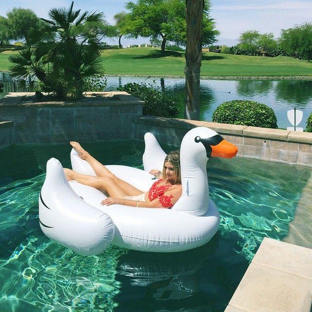 What a swan-derful world ✨
