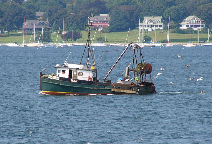 115 best usa jamestown images on pinterest american for Fishing in rhode island