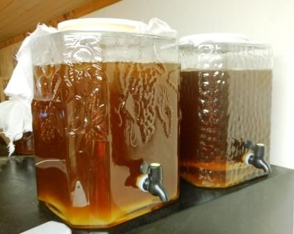 continuous brew kombucha instructions