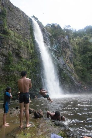 Hunua Falls are a great summers day destination if you aren't wanting to walk too far to get to the waterfall, but are also ideal if you are looking to go for a scenic bush walk.