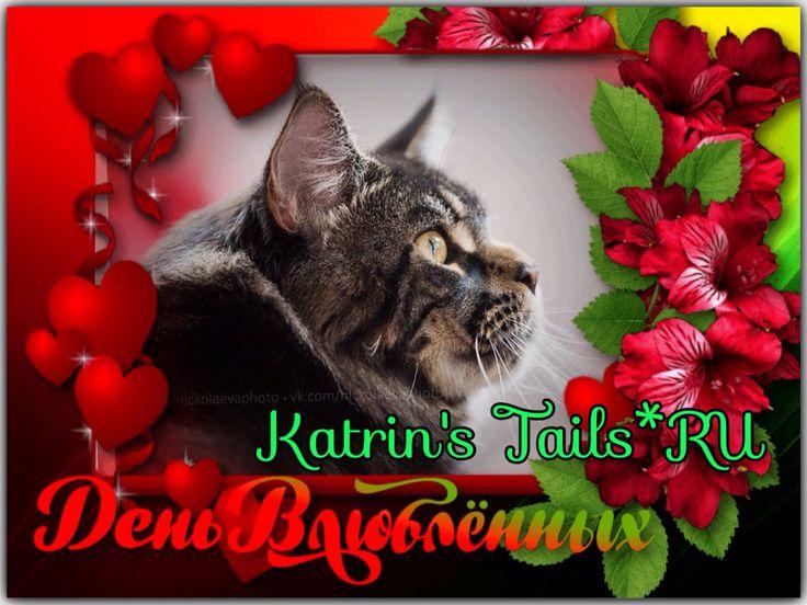 Поздравляем всех с Праздником!!! Любви вам и Счастья!!! #katrinstails #валентинка #деньсвятоговалентина2016