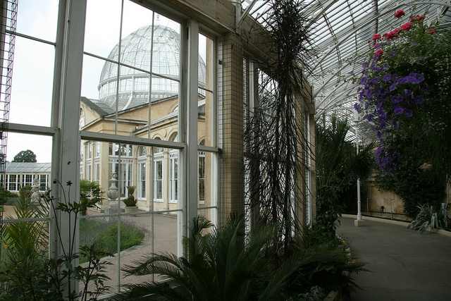 Syon Park Conservatory by Pete Reed, via Flickr