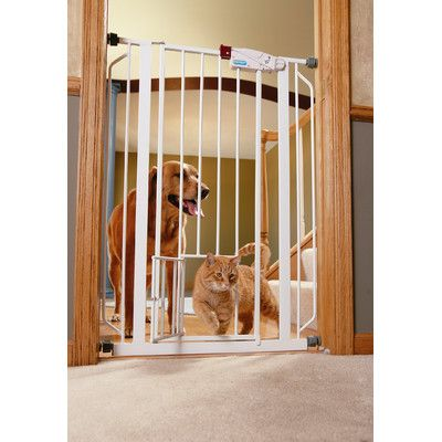 Carlson Pet Extra Tall Pet Gate with Pet Door & Reviews | Wayfair