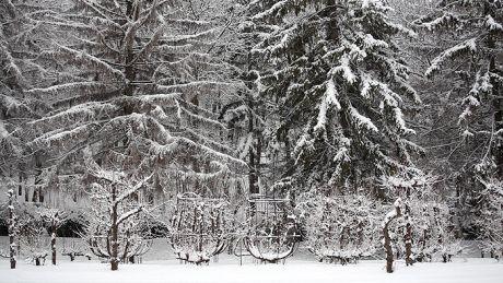 Iarna revine în forţă. AVERTISMENTUL emis de meteorologi