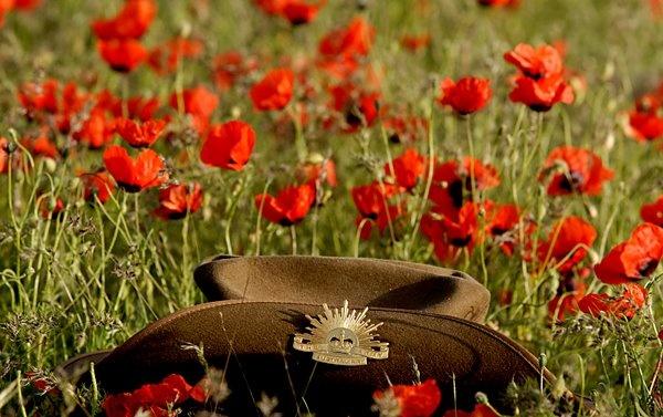 An Australian Army slouch hat in a poppy field.
