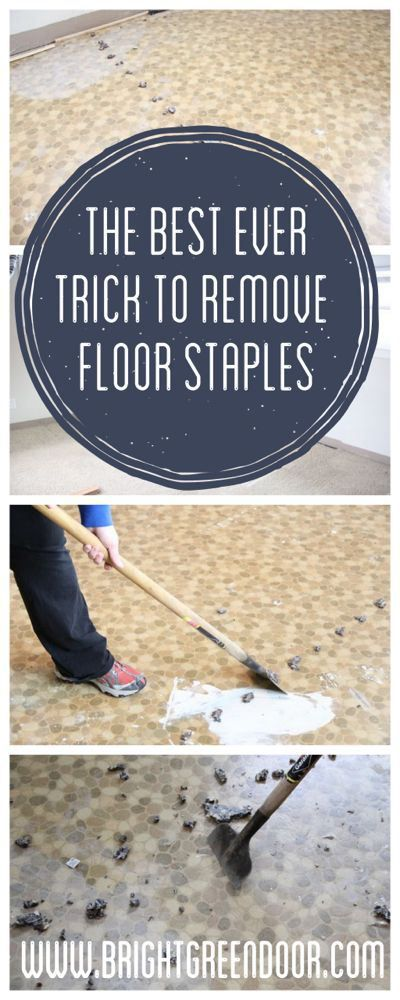 How to remove carpet staples