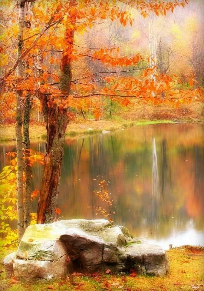 Autumn Splendor!