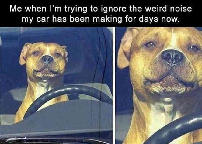 30 Funny Pictures For Today (#115)