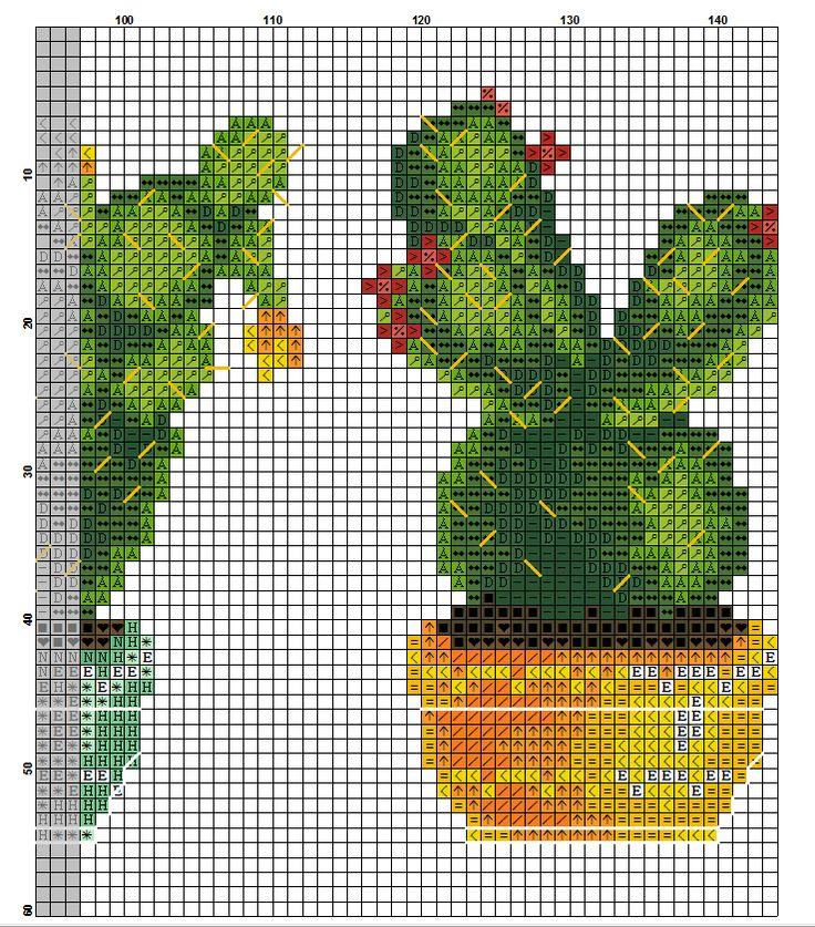 kaktusy hh 5