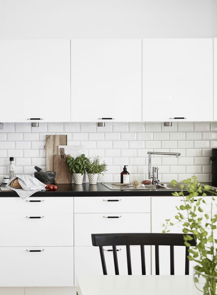 Monochrome kitchen with green plants
