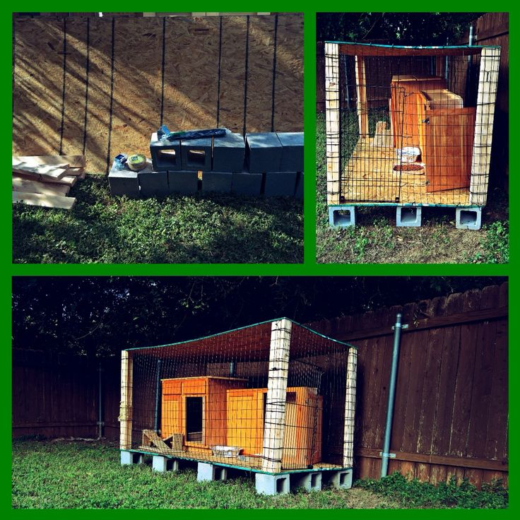 My husband built this cool cat patio !  Materials: 2- 4x8 plywood 4- 2x4's 1- 4x50 coated wire fencing 12- 1/2cement block 70- zip ties