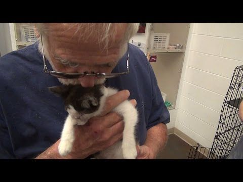 Angry Grandpa's New Puppy! - YouTube