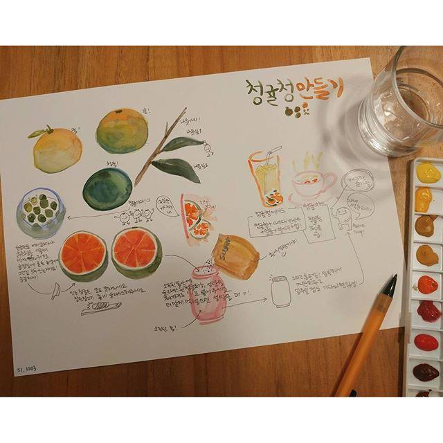 #청귤청만들기 #레시피 일주일전에 #청귤청 이랑 #레몬청 을 담궜다. 근데왜아직도완성이안되니 나도먹고싶다... . .. . . . #제주 #가을 #그림일기 #fall_in_jeju . . . . #cafe #recipe #lemon #ade #illustration #drawing #infographic #mandarin #청귤청에이드 #청귤차 #에이드 #일러스트 #동양화물감 #인포그래픽 #나무 #fruit #tea #수채화 #캘리그라피