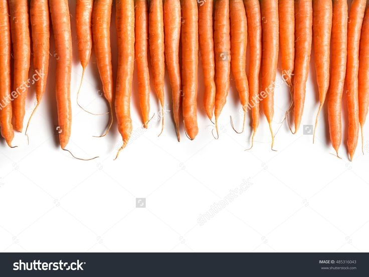 Fresh Carrots In Row Isolated On White Background Top View. Banner And Copy Space For Text. Web-Design Studio Shot. Concept Of Healthy Lifestyle. Stock Photo 485316043 : Shutterstock