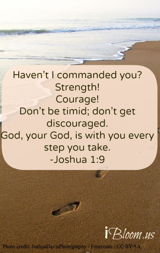 Joshua 1:9 ~ Haven't I commanded you? Strength! Courage! Don't be timid; don't get discouraged. God, your God is with you every step you take...