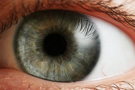 la gran <b>pupila</b>: Funcion de la <b>pupila</b>