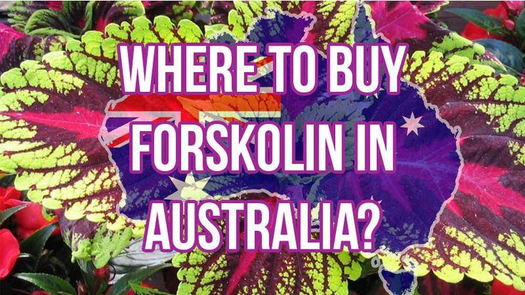 Where to Buy Forskolin in Australia?