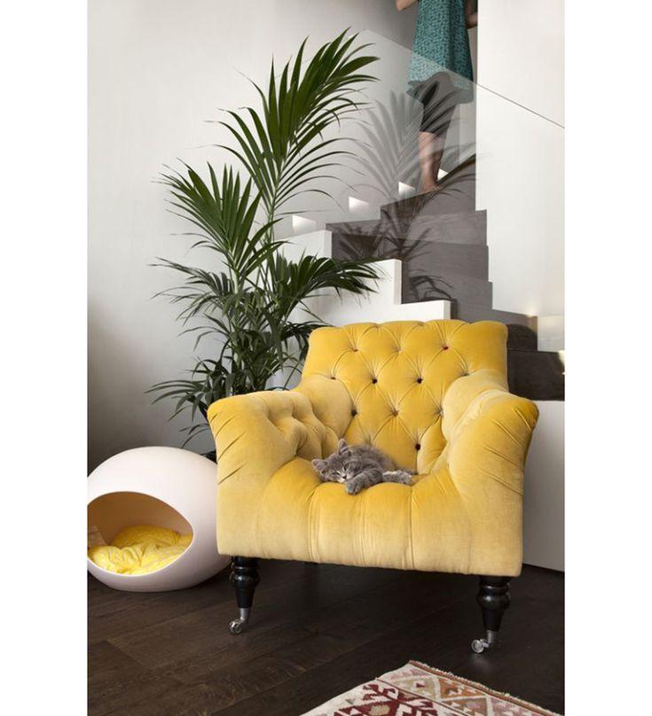 17 beste idee n over gele woonkamers op pinterest meubel idee n muurschilderingen en gele tafel - De mooiste fauteuils ...