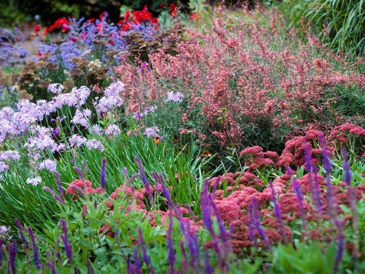 The Garden of St Erth