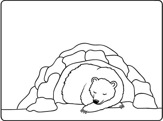 Рисунок спящего медведя в берлоге карандашом