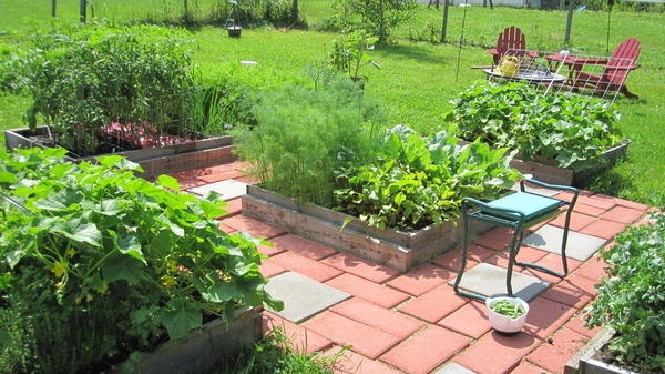 Want to try building raised bed vegetable gardens but not sure where to start?  Check out this blog post!  And if you are from VT and interested in farming and gardening, please join us while you are there!