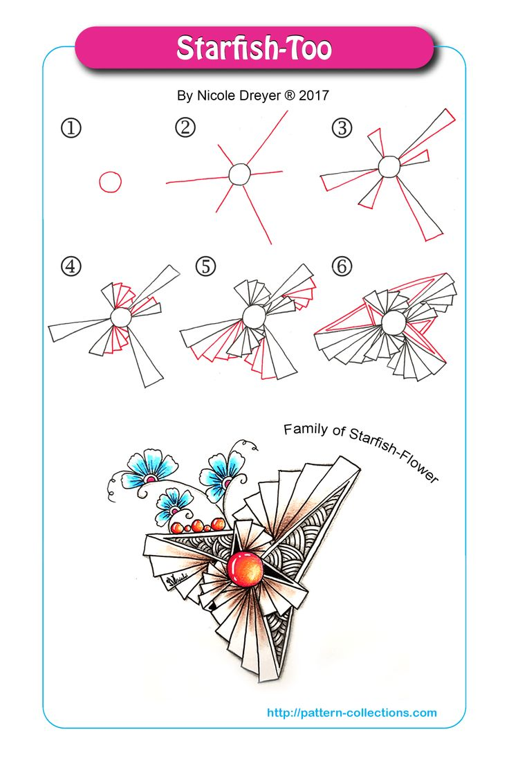 Starfish-Too by Nicole Dreyer