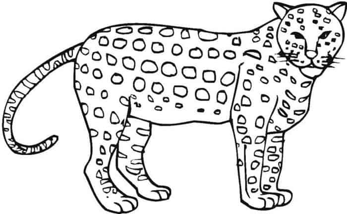 Cheetah Croos Coloring Pages Hard Puppy Coloring Pages Coloring Pages Animal Coloring Pages