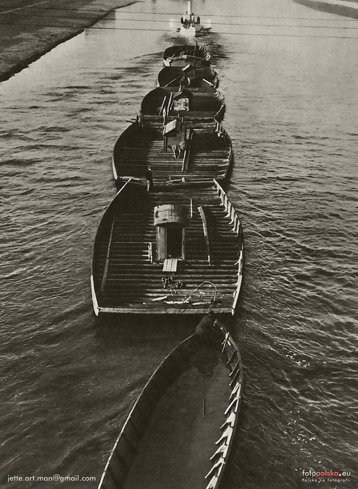 """Rzeka Wisła (Kraków), Poland. Wisła - Konwój barek drewnianych pod Krakowem - SiT """"Wisła"""", 1956 (A convoy of barges of wood near Krakow)"""