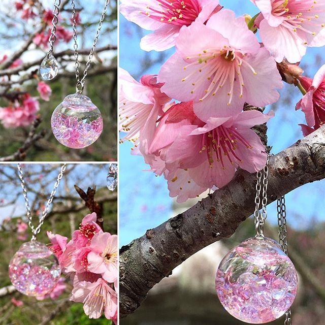 【arissasjewelry】さんのInstagramをピンしています。 《沖縄は桜が満開です(*^^*) こちらは桜の雫ネックレス、ピンク濃いめカラーです♡ #ミンネ #minne #桜 #花 #ガラスドームネックレス #スノードーム #スワロフスキー #ハンドメイドアクセサリー #沖縄 #名護 #癒し》