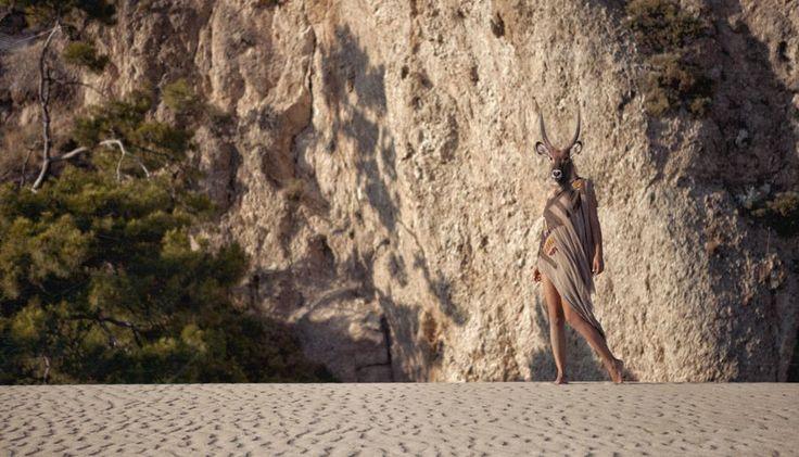 animal, head, nude www.instagram.com/barantokmakoglu