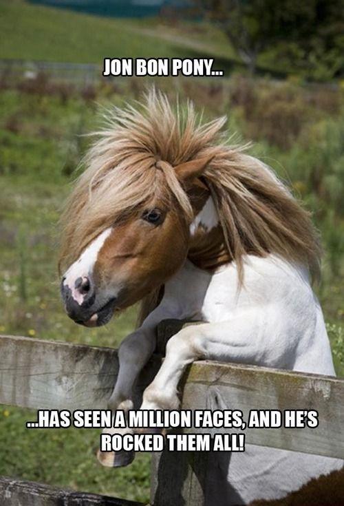 Jon Bon Pony.