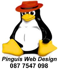 Pinguis Website Design in Ireland