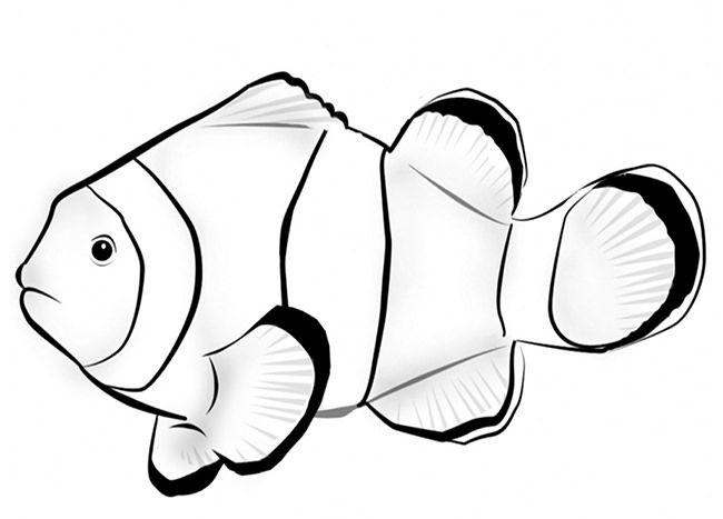 Free Premium Templates Fish Coloring Page Animal Coloring Pages Coloring Pages