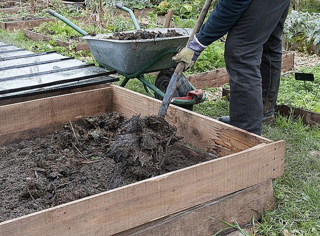 Comment enrichir le sol du potager en engrais naturel : les règles à suivre pour bien procéder.