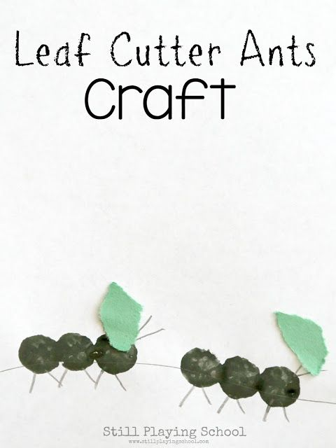 Leaf Cutter Ant Craft for Kids | Still Playing School