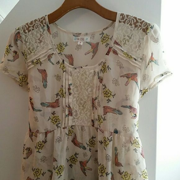 Love, Fire Hi-Lo Peasant Blouse Super cute peasant style top! This sheer top has a cream background with a bird & flower print, and lace details on the shoulders and chest. It is a hi-lo blouse with a tie in the back. 100% polyester. love, FIRE Tops Blouses