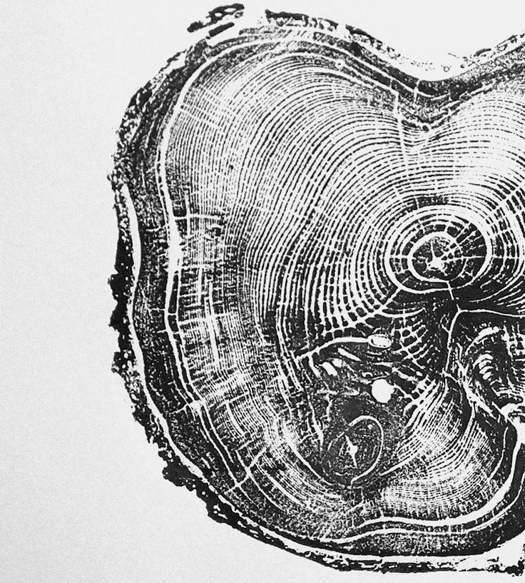Tree Ring - Talvez em teal? Verde?