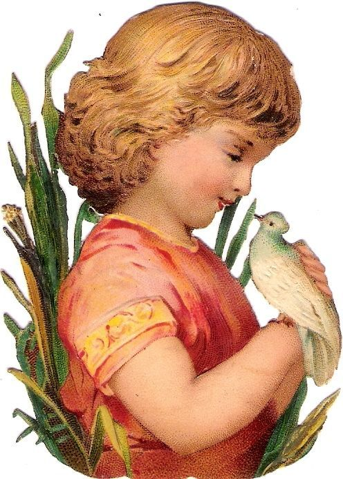 Oblaten Glanzbild scrap die cut chromo Kind child 8,8cm Taube dove colombe buste