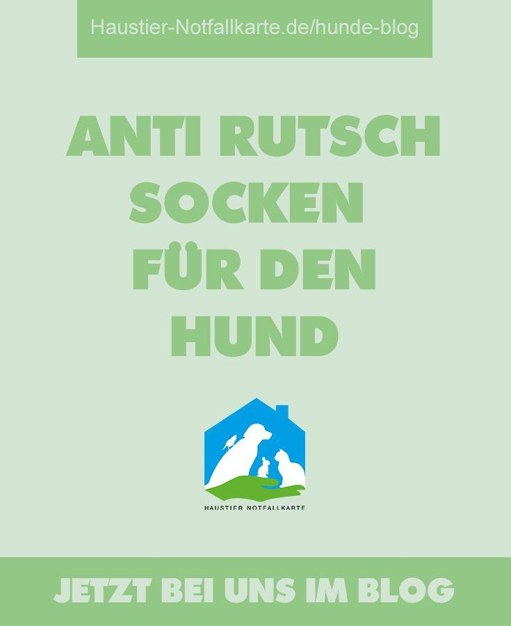 So einfach hilfst Du Deinem Hund auf rutschigen Böden! Anti Rutsch Socken für den Hund - jetzt bei uns im Haustier Notfallkarte Hunde Blog #hunde #erziehung