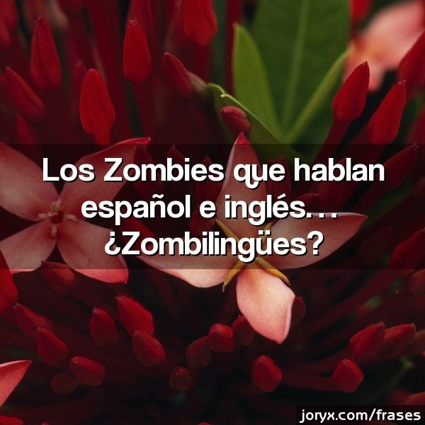 Los Zombies que hablan español e inglés... ¿Zombilingües?