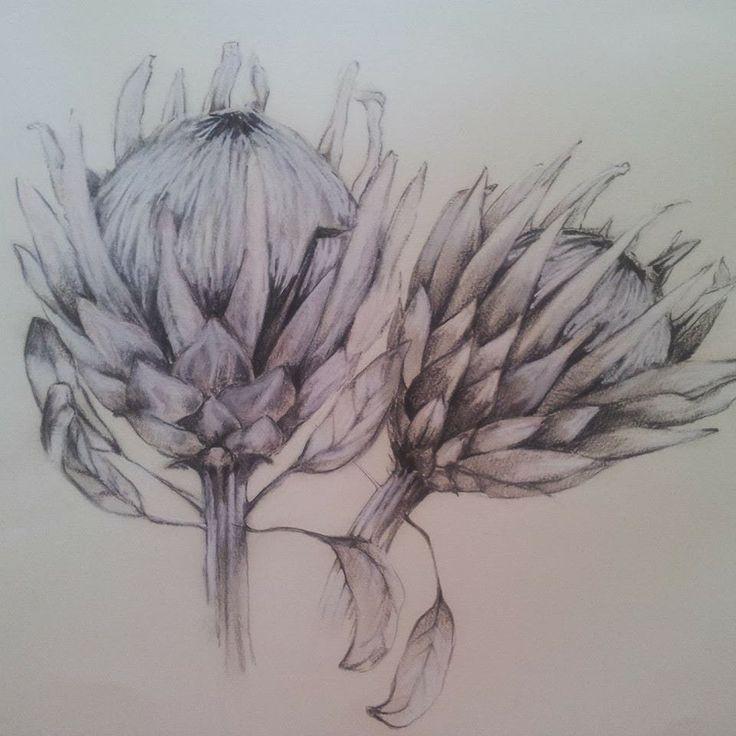 Charcoal on paper. Melissa Von Brughan Art